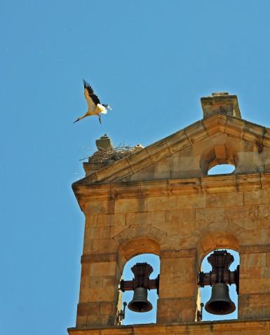 Salamanca, Castile and León, Spain