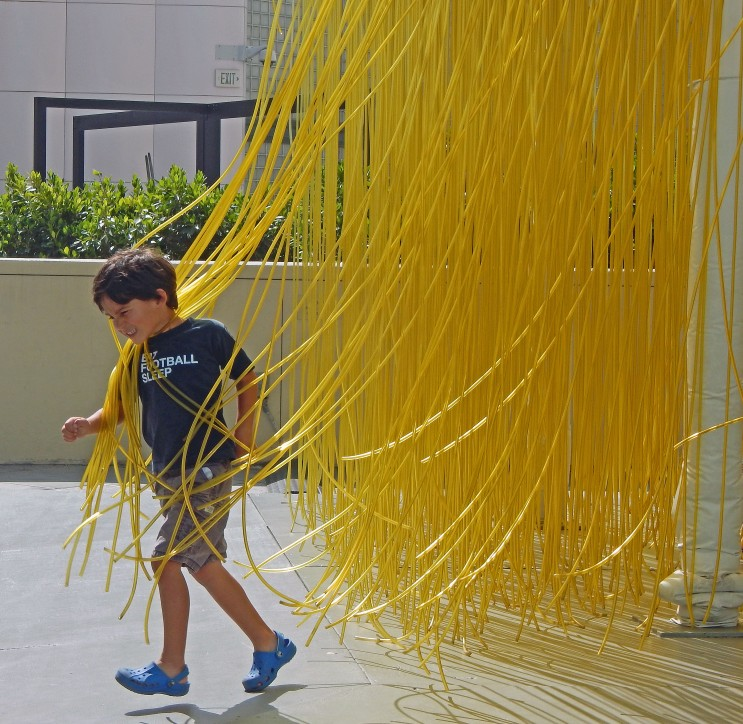 Touch! Looks like spaghetti drying to me.